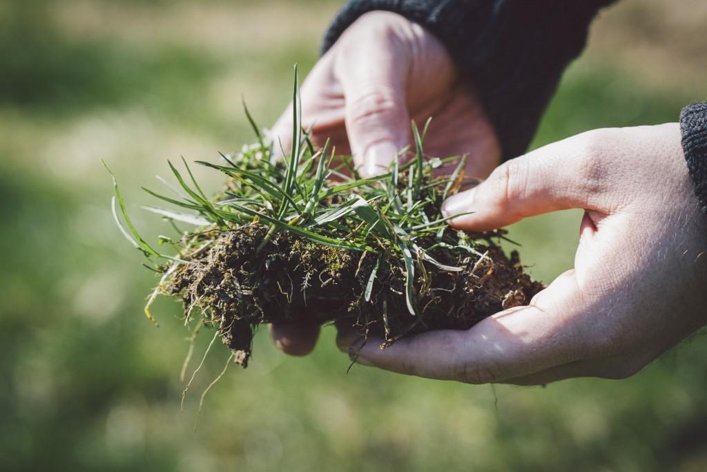 除草剤の安全な使い方
