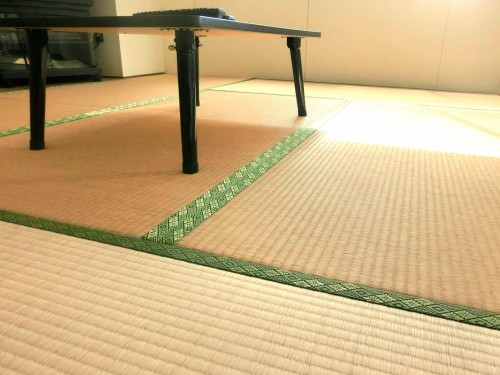 畳のカビ除去はカビキラーよりエタノールと酢や重曹と漂白剤