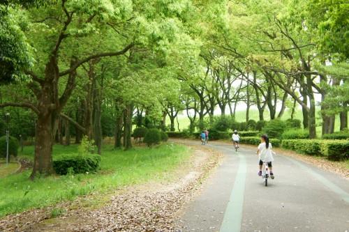 子供の自転車保険の選び方と示談交渉