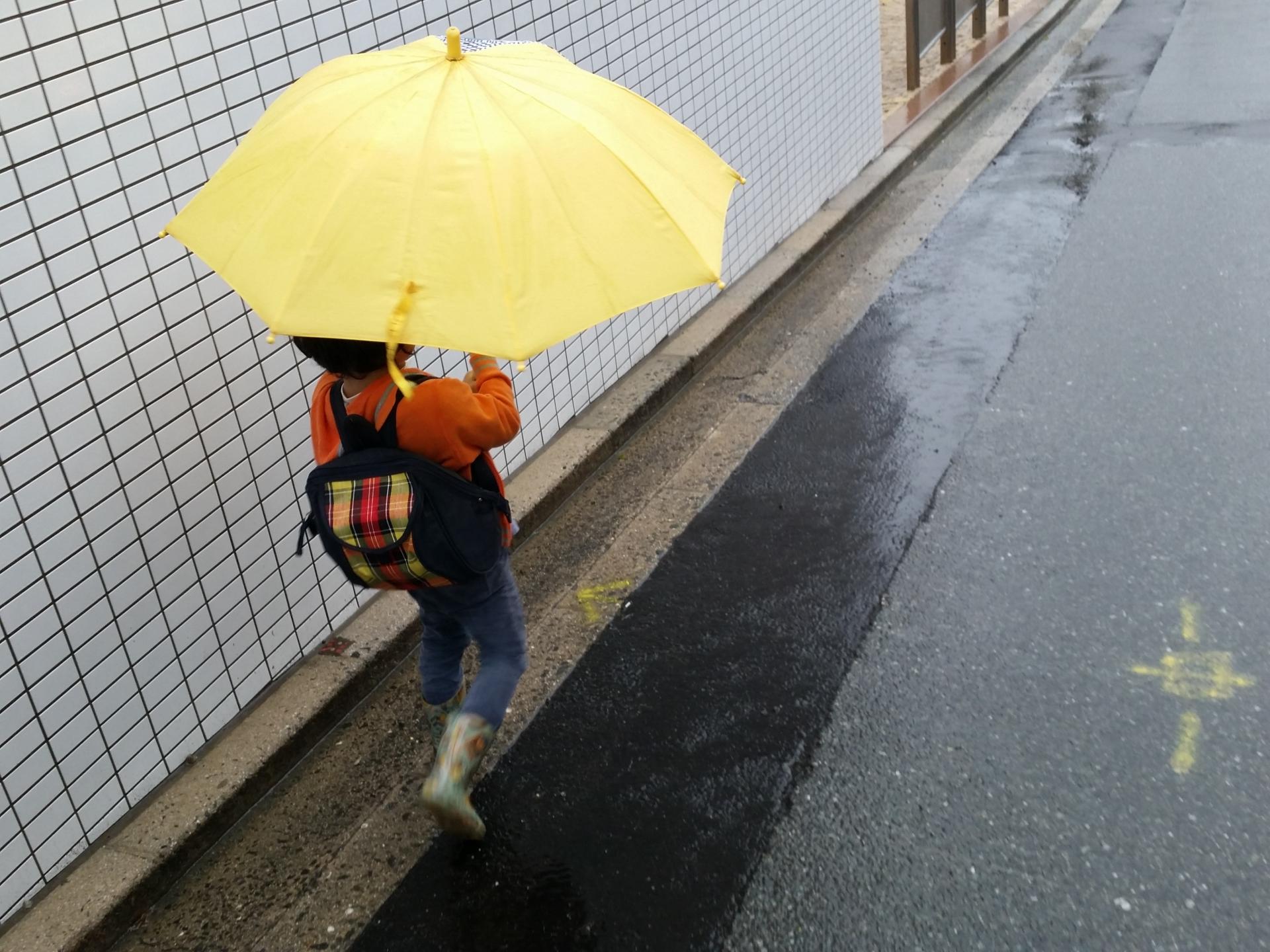 台風で会社は休みにならない?出勤でき ...